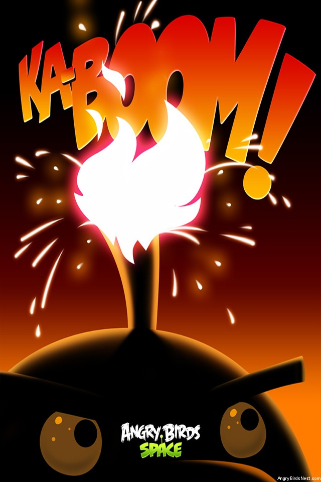 Angry-Birds-Space-Bomb-Bird-iPhone-Wallpaper